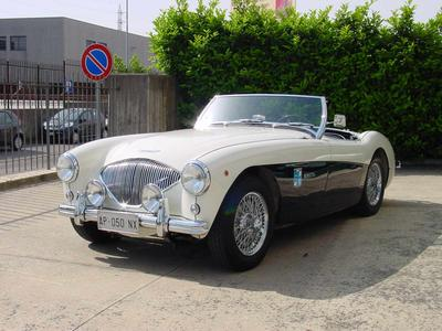 www.BRESCIACAR.it -AUSTIN HEALEY 100/4 BN2 anno 1955