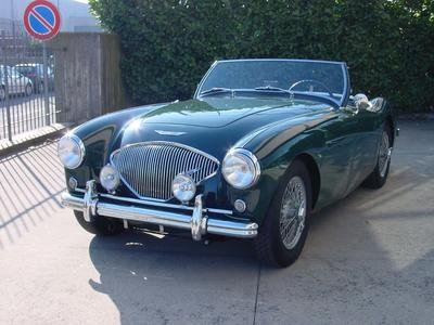 www.BRESCIACAR.it -AUSTIN HEALEY 100/4 BN1 anno 1954